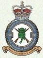 RAuxAF Defence Force RAF Lyneham