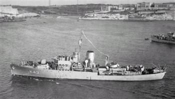 HMS Freesia