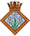 HMS Afrikander