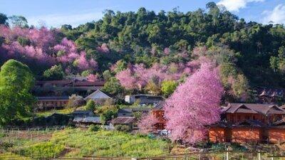 Retiring to Chiang Mai, Thailand