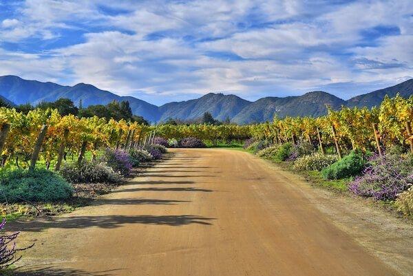 chilean property
