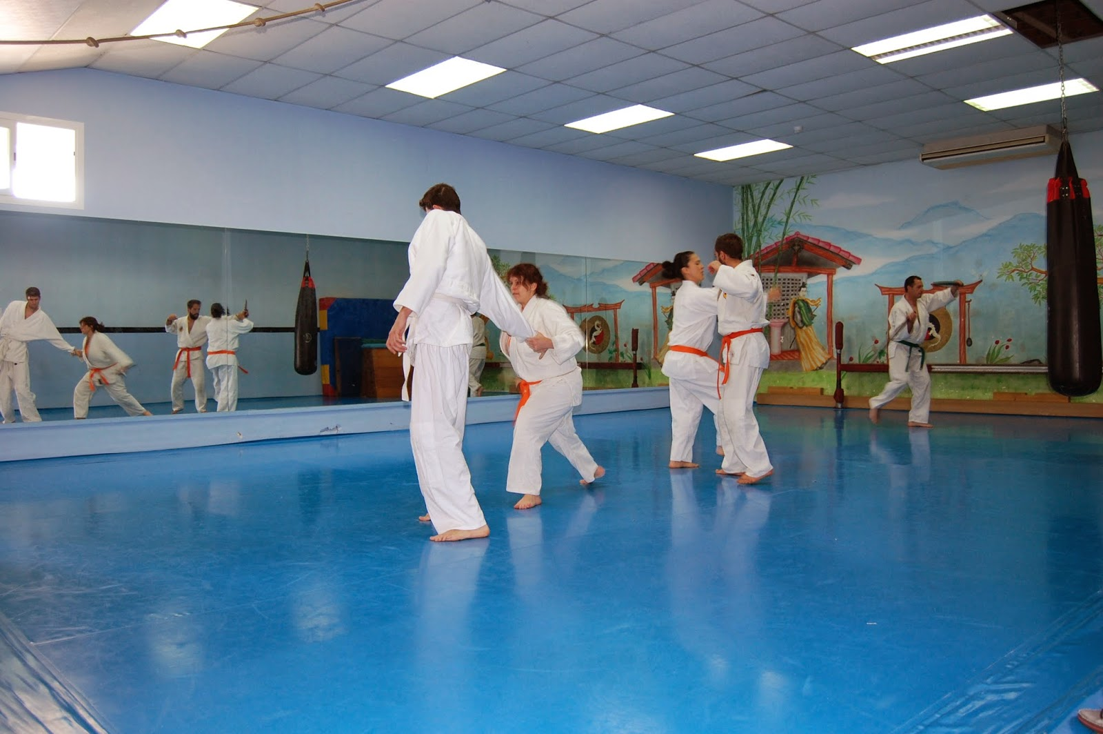 Foto 3 Oferta Gimnasio Shen Dragon & Selecta Dance School Terrassa - GymForLess