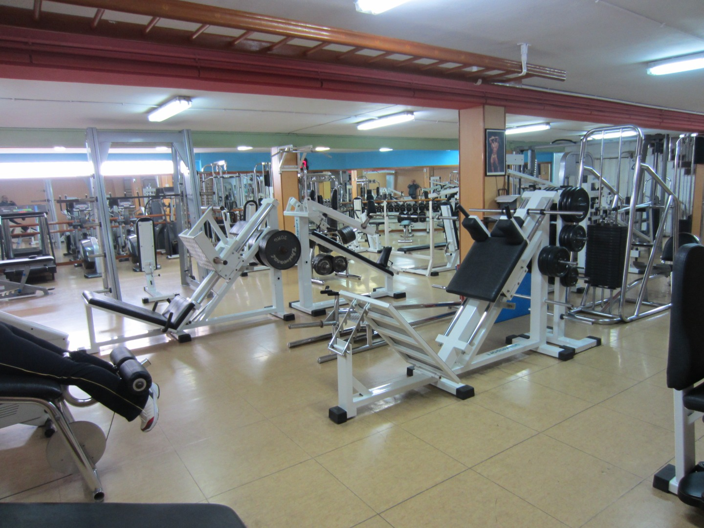 Oferta gimnasio guinard center gym barcelona gymforless for Gimnasio zamora