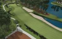 Tiger Woods PGA Tour 2002 download