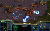 StarCraft: Battle Chest download