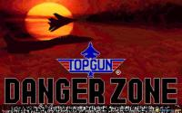 Top Gun Danger Zone download