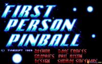 First Person Pinball download
