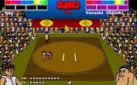 Super Sumo Wrestling 2002 download