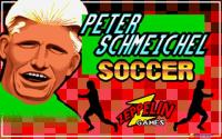 Peter Schmeichel Soccer Manager download