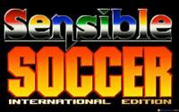 International Sensible Soccer download