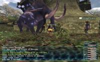 Final Fantasy XI download
