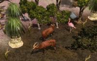 Wildlife Park 2 download