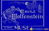Castle Wolfenstein download