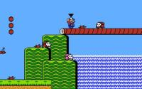 Mario throwing a turnip on the bridge