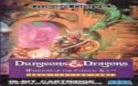 Dungeons & Dragons: Warriors of the Eternal Sun download