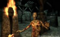 Image related to The Elder Scrolls IV: Oblivion Game of the Year Edition game sale.
