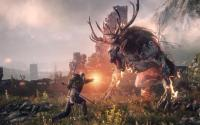The Witcher 3: Wild Hunt - Game of the Year Edition download