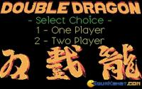 Double Dragon download