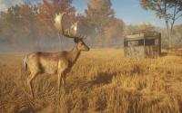 Image related to theHunter: Call of the Wild - Tents & Ground Blinds game sale.