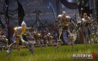 Blood Bowl 2: Official Expansion + Team Pack download