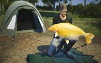 Euro Fishing: Le Lac d'or download