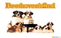 Beethoven's 2nd download
