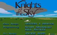 Knights of the Sky download