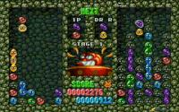 Dr. Robotnik Mean Bean Machine pc game