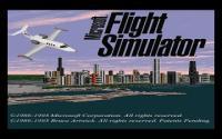 Microsoft Flight Simulator 5.0 download