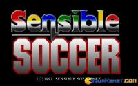 Sensible Soccer download