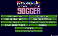 Sensible World of Soccer download