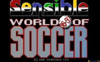 Sensible World of Soccer 96/97 download