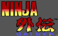 Ninja Gaiden download