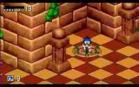 Sonic 3D Blast - Flickies' Island download