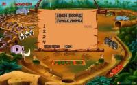 Jungle pinball high score