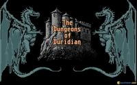 The Adventures of Maddog Williams in the Dungeons of Duridian download