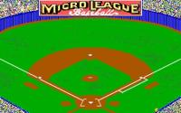Micro League Baseball 2 download