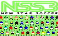 New Star Soccer 3 download