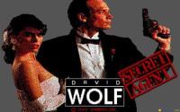 David Wolf: Secret Agent download