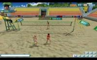 Beach Volleyball download