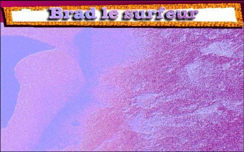 Murder Mystery Case 3: Who Killed Brett Penance - The Environmental Surfer - game cover