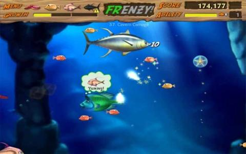Feeding Frenzy 2 - game cover
