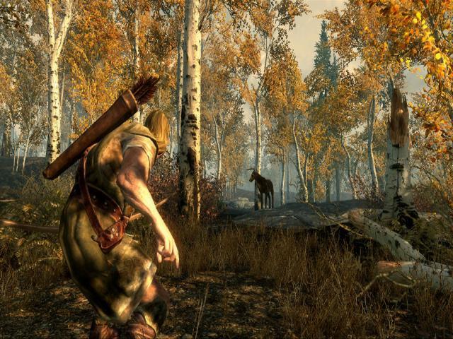 The Elder Scrolls V: Skyrim - title cover