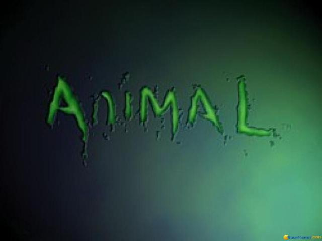 Animal - title cover