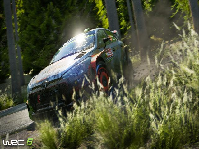 WRC 6 - title cover