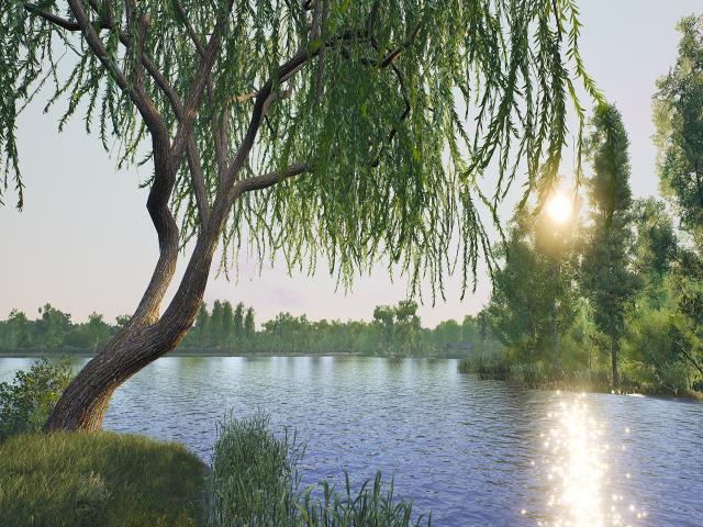 Euro Fishing: Manor Farm Lake - game cover