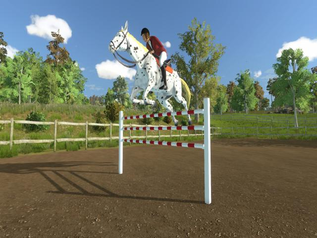 my little riding champion - title cover