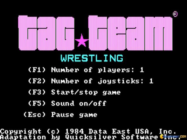 Tag Team Wrestling - game cover