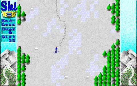 Skiking 2 - game cover