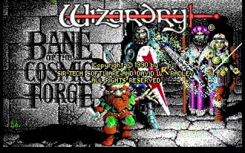 Wizardry VI - game cover